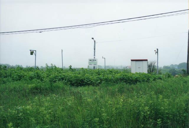駅の近傍の道路から眺めると、草むらに埋もれて見える