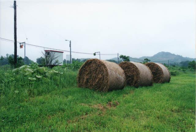 駅前に転がる牧草ロール