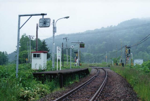 緩やかな曲線に、踏切とともに簡素な駅が佇んでいる