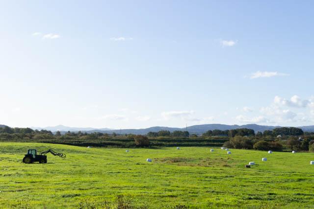 駅の背後には、天塩川に至る河岸段丘に牧草地が広がっている