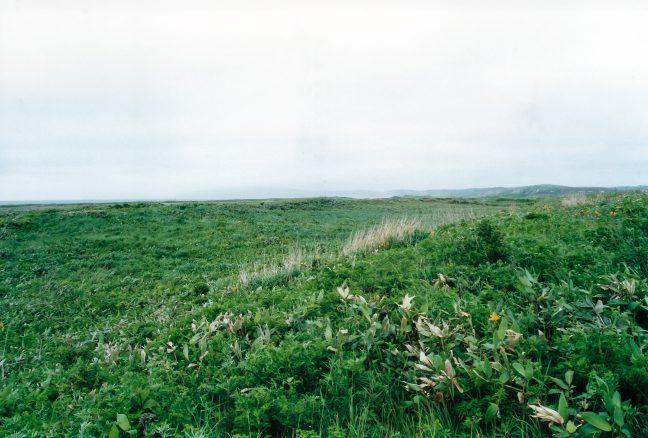 曇天に煙る稚内丘陵方面の風景