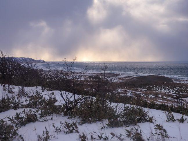 灌木の茂る丘の向こうに、日本海と抜海漁港の町並みを見送る
