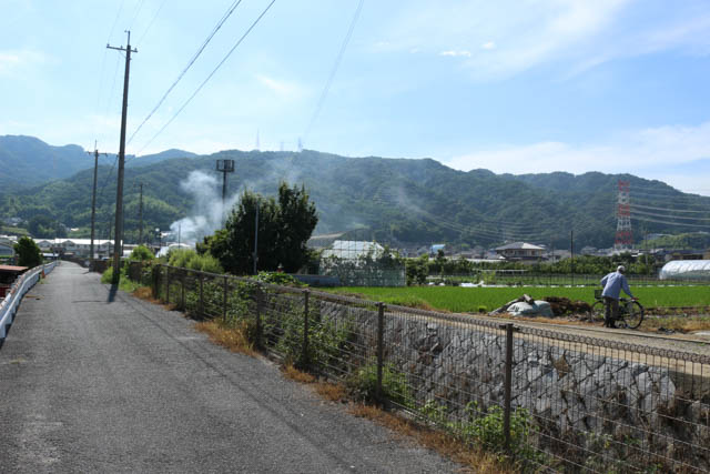 この辺りまで来ると、住宅地の中に農地も現れ始める