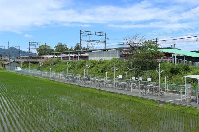 松塚駅の周辺には水田も広がり長閑な雰囲気