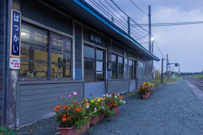 手入れされたホームの花壇と風雪に耐え忍んだ抜海駅の駅舎