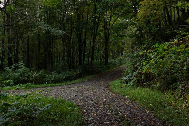 林道分岐点の様子。手前側から左に折れて、北星駅前に出る