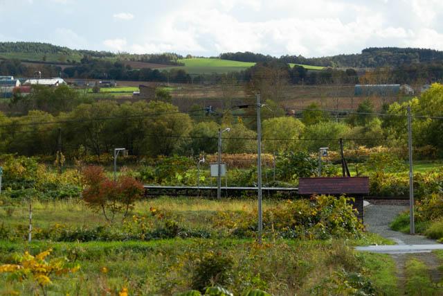 駅前の丘の中腹から眺めた北星駅付近