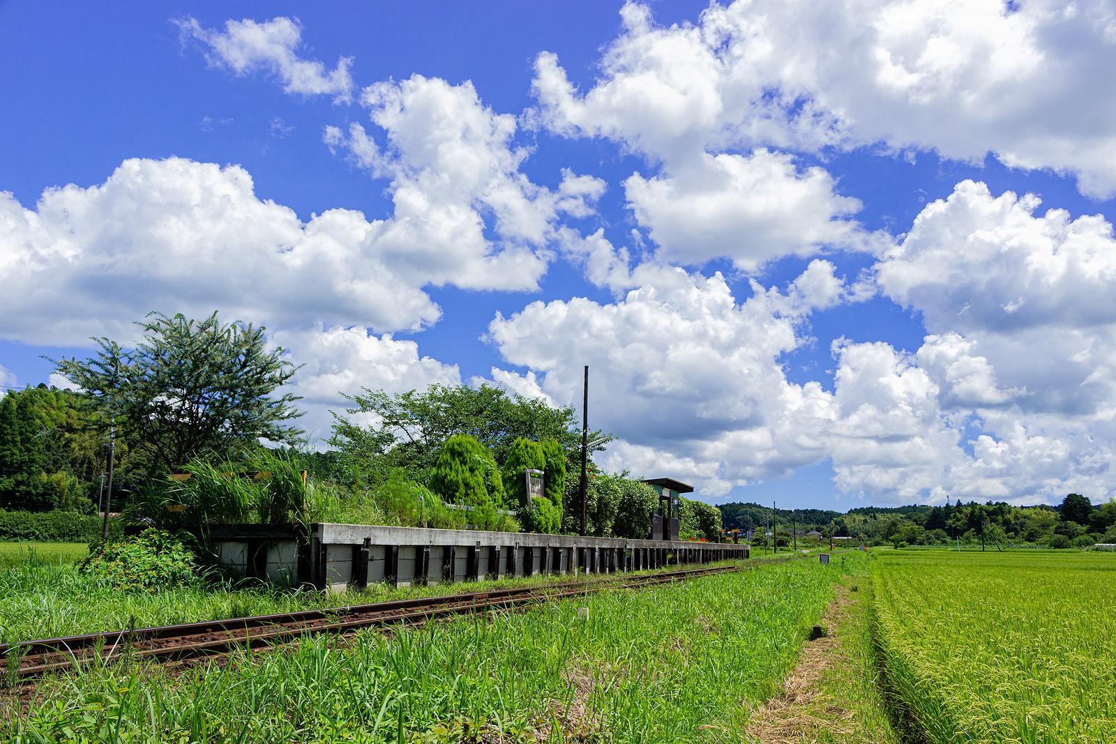 長閑な田園風景の中に佇む上総川間駅