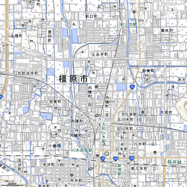 地形図:大和八木駅周辺