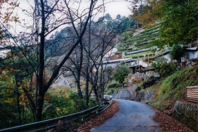 JR飯田線・小和田駅付近・塩沢集落(静岡県:2001年11月)