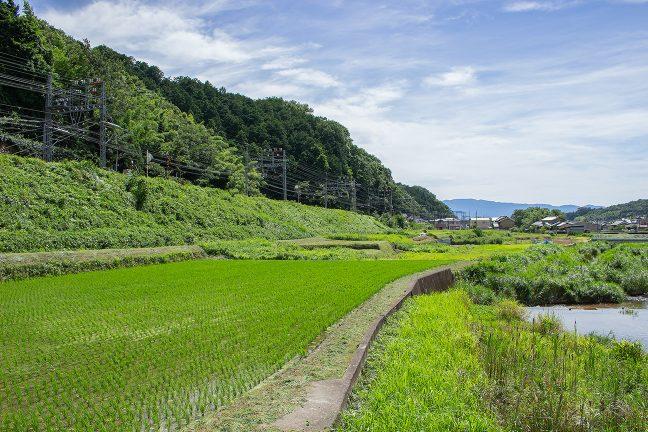 大和朝倉駅を出発すると、長谷寺駅に向けて、上り勾配が続く