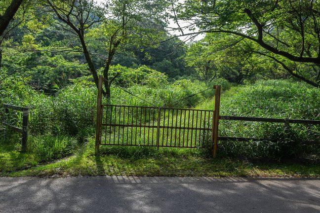 旧線跡は簡易ゲートで封鎖されている