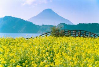 池田湖と開聞岳(鹿児島県:1997年12月)