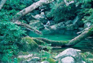 大隅半島・辺塚付近(鹿児島県:1997年12月)