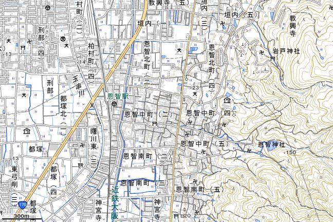 地形図:恩智駅周辺