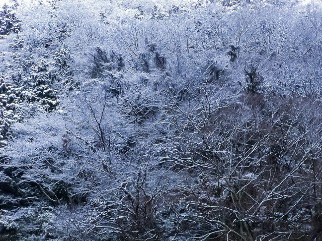 辺りの山は雪を被って静まり返っていた
