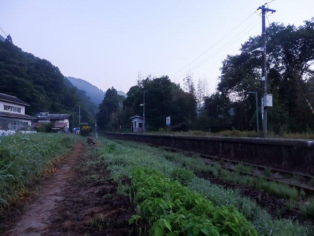 朝もやの底から夏空の気配が漂い始めた