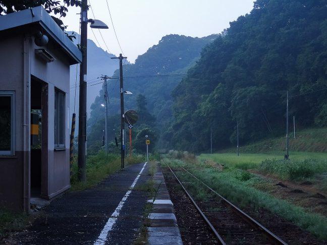 草むした山林の向こうに続く芸備線の鉄路