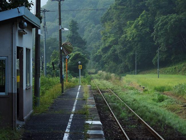 草むした線路が旅情を誘う