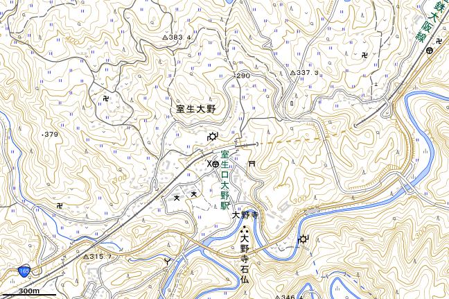 地形図:室生口大野駅周辺