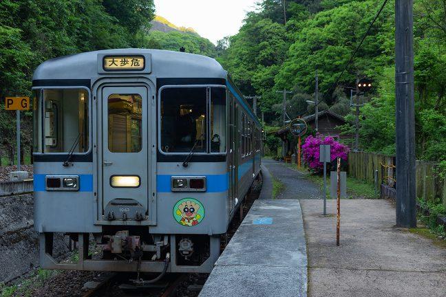 坪尻駅に到着した大歩危駅行き普通列車
