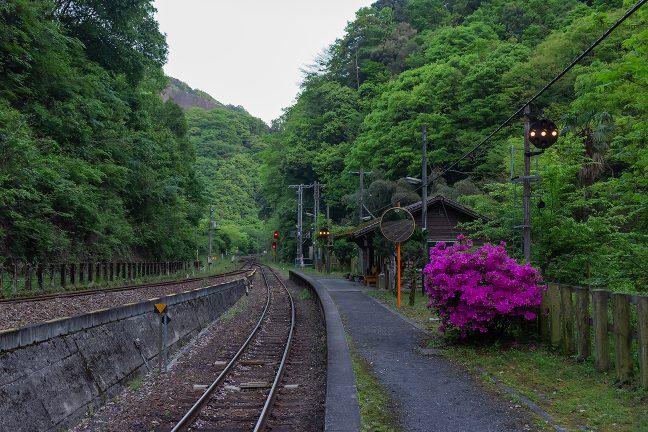 駅は見通しの悪い谷間にあるため、中継信号機も設けられている