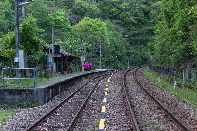 構内踏切から坪尻駅のホームと通過線を眺める