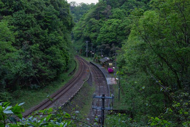 トンネル側の斜面から俯瞰した坪尻駅