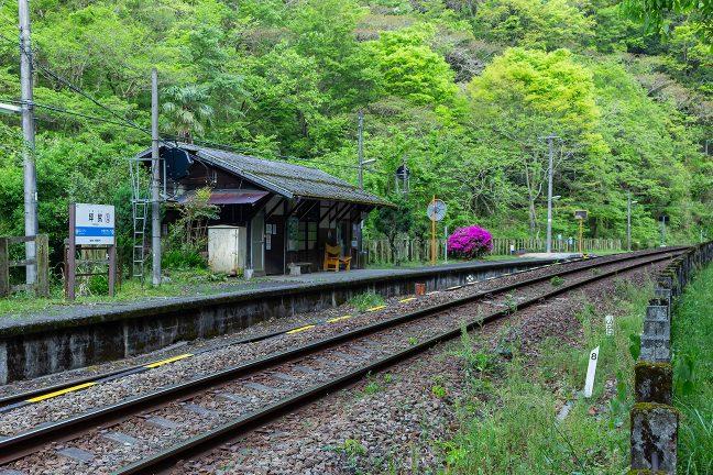 色鮮やかなツツジが印象的な朝の坪尻駅