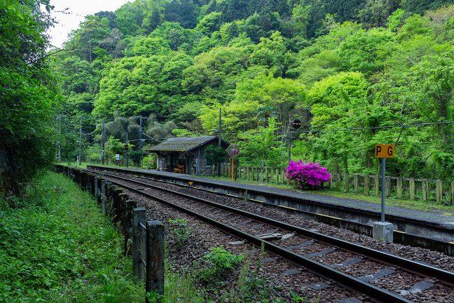 5月の新緑に包まれて好ましい雰囲気の坪尻駅