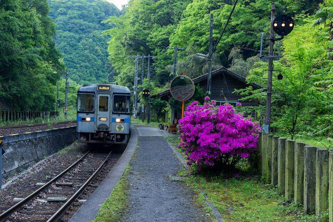 琴平駅行きの普通列車に乗って旅情駅・坪尻を旅立つ時が来た