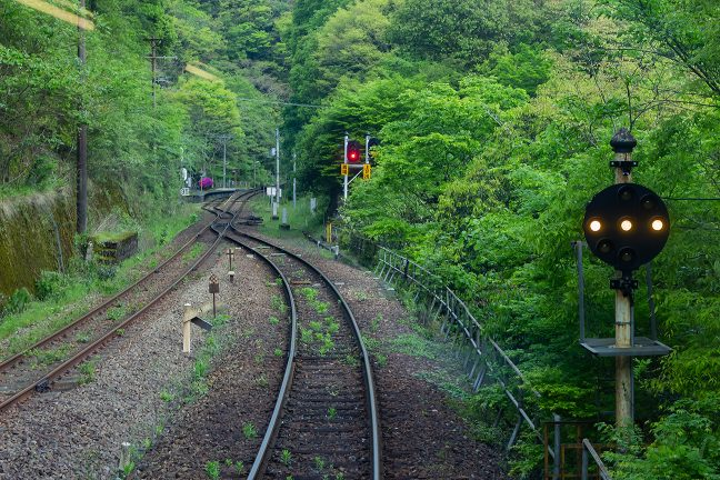 引込線の奥に停車した普通列車から眺める坪尻駅全景