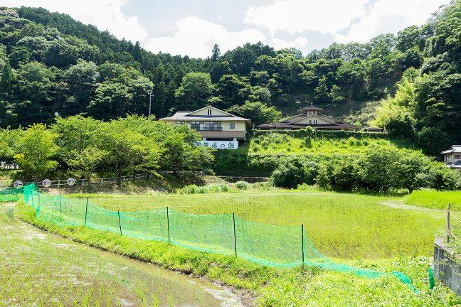 県道付近から眺めた温泉保養館「湯の瀬」の全景