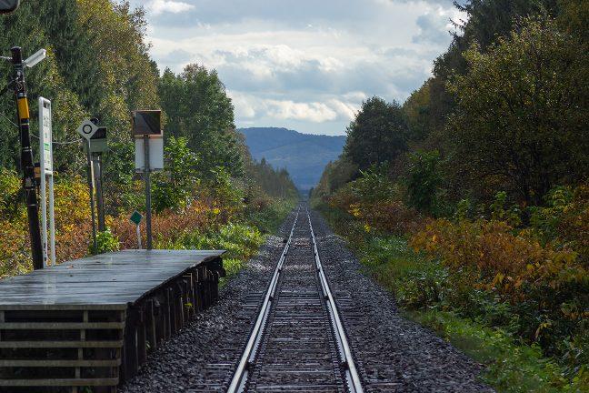 訪れる者も居ない駅を防風林が守り続ける