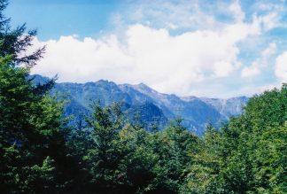中尾高原付近から望む笠ヶ岳(岐阜県:2001年8月)
