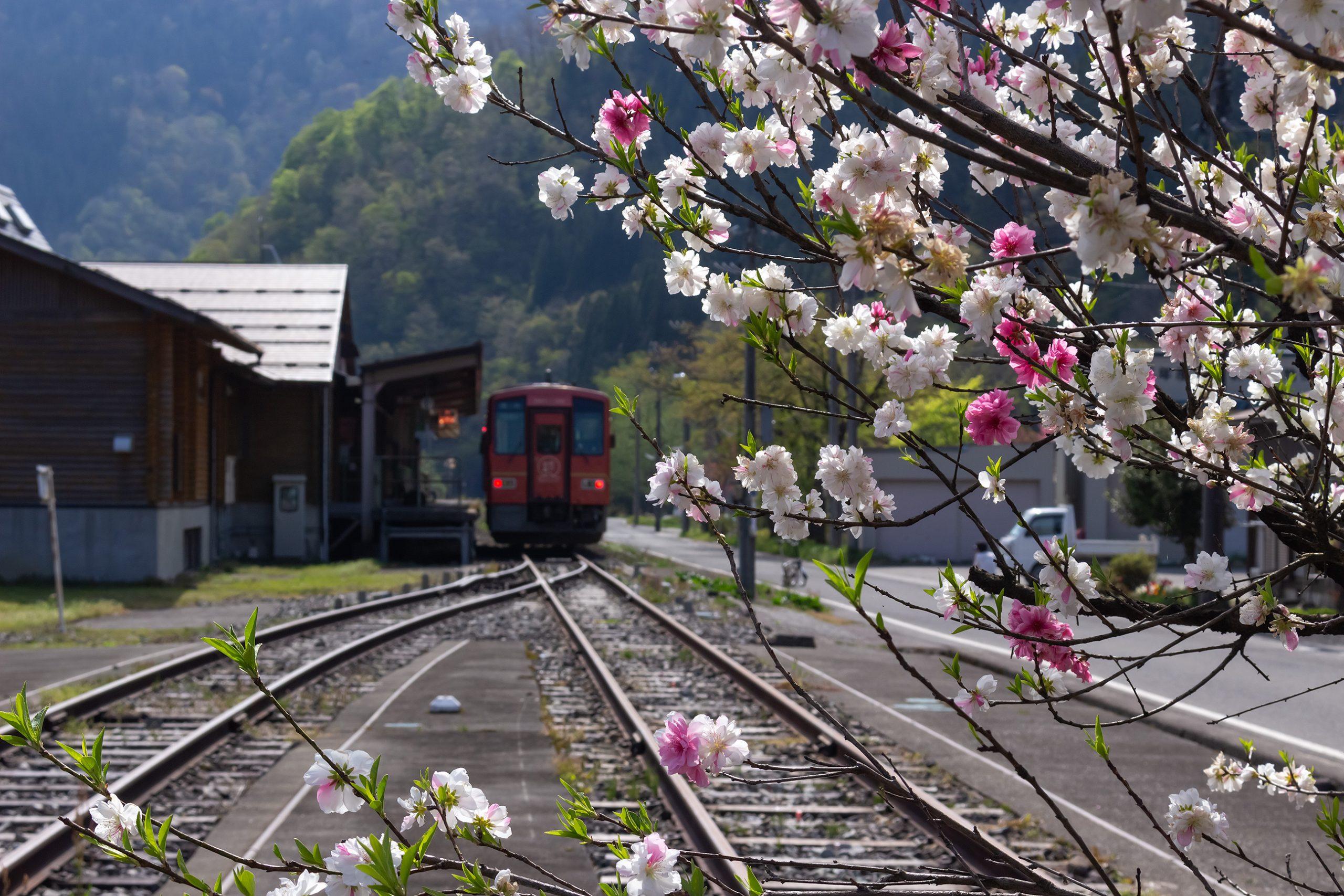 JR越美北線・九頭竜湖駅(福井県:2021年4月)
