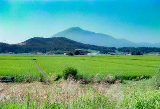 JR花輪線・東大更~大更間・岩出山(岩手県:2001年8月)