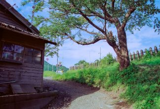 JR山田線・吉里吉里駅付近(岩手県:2001年8月)