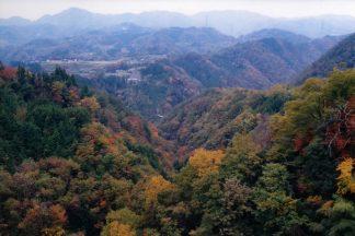 JR飯田線・田本駅付近(長野県:2001年11月)