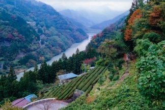 JR飯田線・中井侍駅付近(長野県:2001年11月)