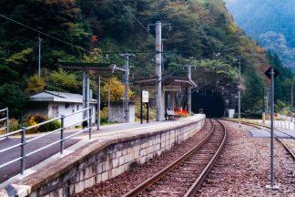 JR飯田線・大嵐駅(静岡県:2001年11月)
