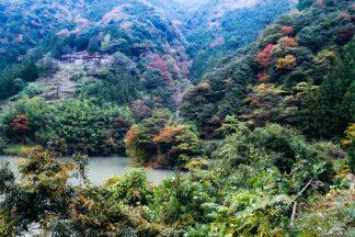 JR飯田線・大嵐駅付近・夏焼集落(静岡県:2001年11月)