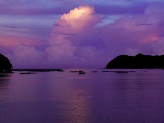 浅川湾(徳島県:2002年8月)