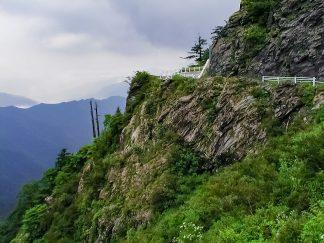 石鎚山麓(愛媛県:2002年8月)