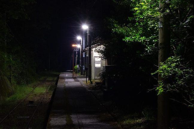 駅の周辺は木立に覆われていて、ホームの一角だけが明るく照らされている