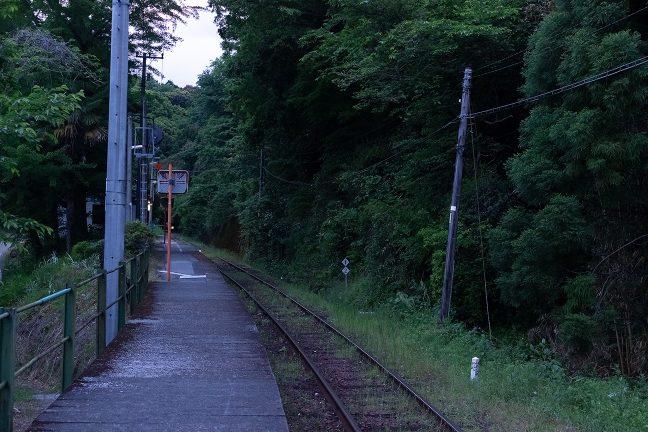 常緑樹も多く、濃い緑に包まれた新改駅
