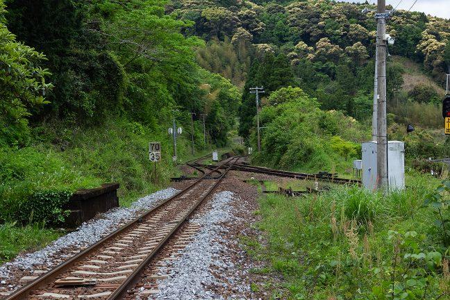 本線を渡った先の廃屋に向かう道の跡から