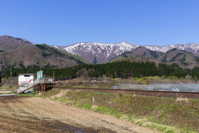 標高1000m前後の稜線は残雪をまとっていた