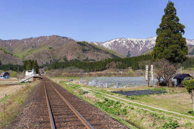 駅の真向かいには、白山神社が鎮座していた