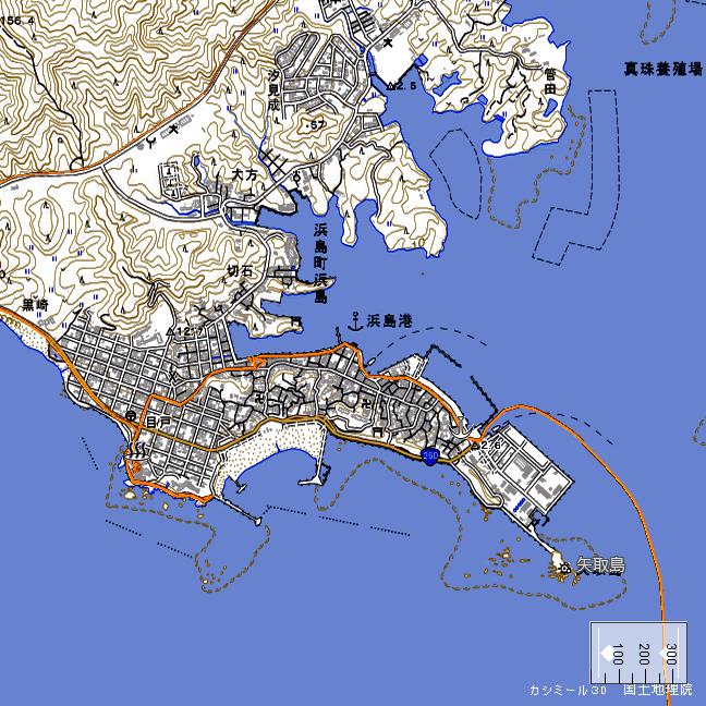 地形図:浜島周辺